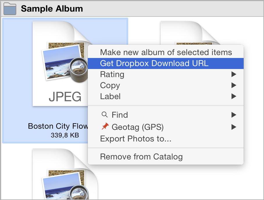 Dropbox how to download album